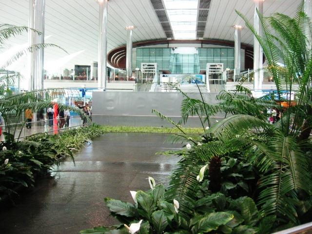 длительная стыковка в аэропорту Дубая