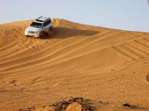 пустыня атосафари