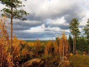 каннельярви ленинградская область
