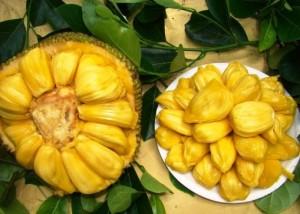 Джекфрут Jackfruit