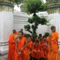 будистские монахи фото