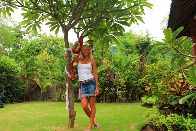 наша новогодняя елка в индонезии