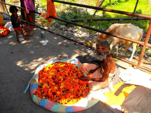 цветочный рынок с индии