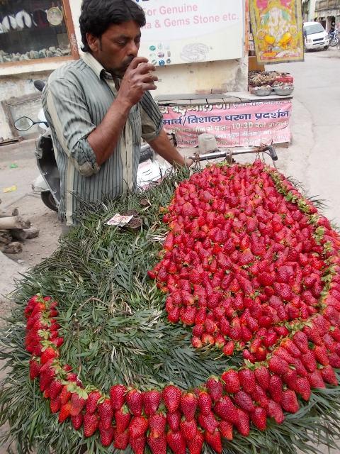 индия кормят в ашраме шантикундж