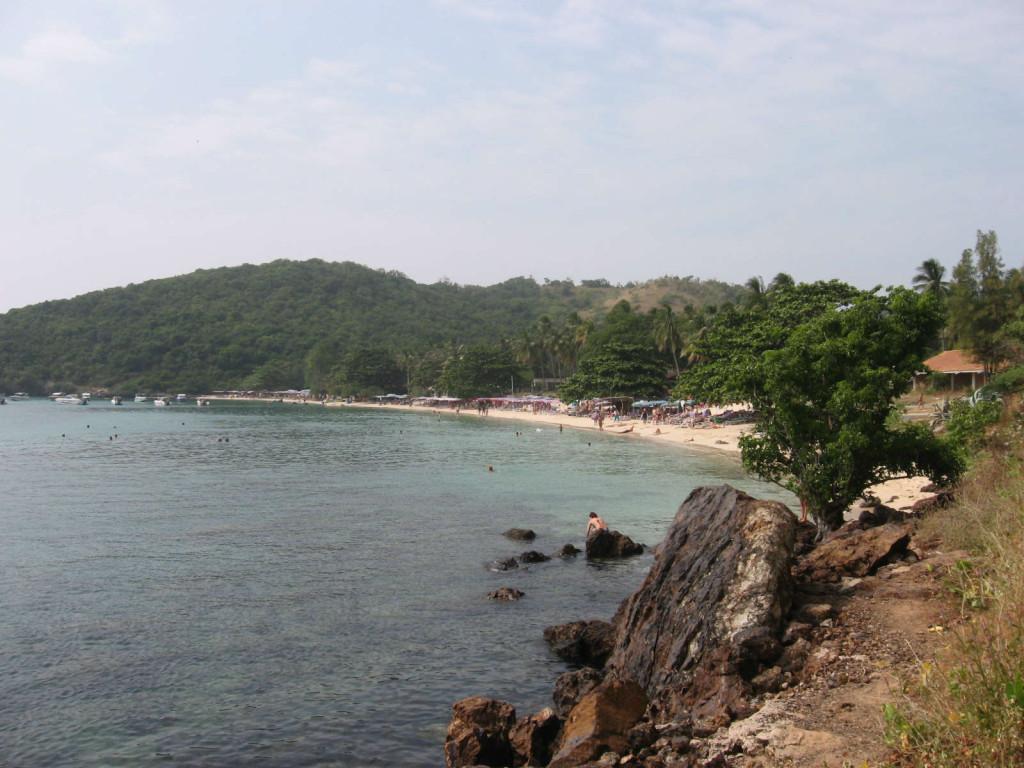 обезьяний пляж паттайя