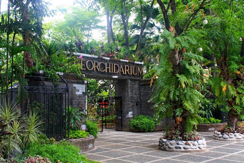 манила парк орхидей