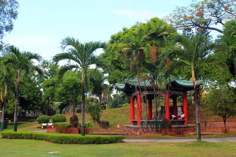 манила китайский сад