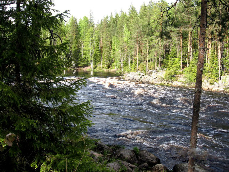 карелия река шуя
