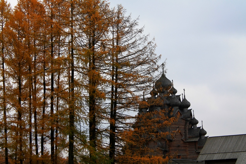 деревянная церковь фото