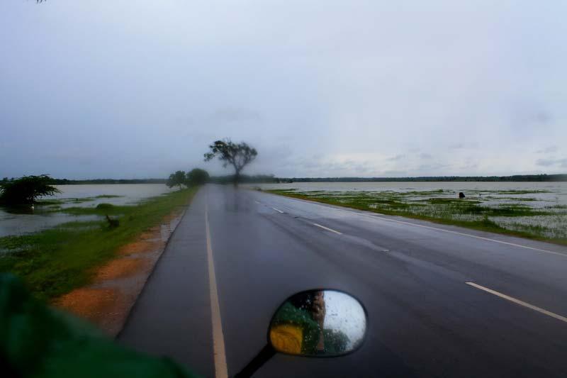 дожди на шри ланке в сухой сезон