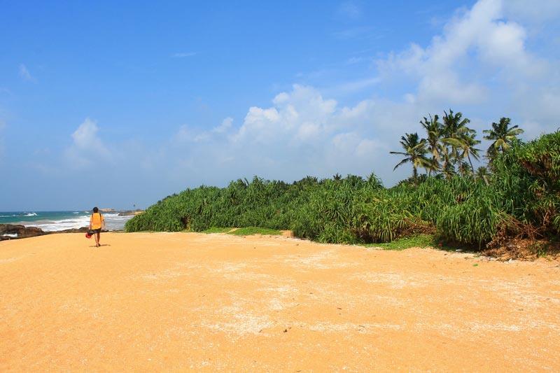 лучшие пляжи шри ланки додандува 2