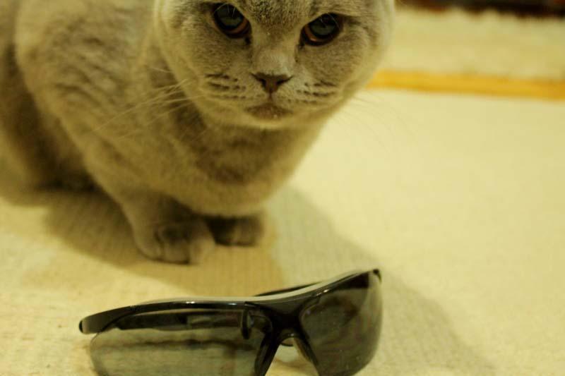 не дорогие очки с UF защитой