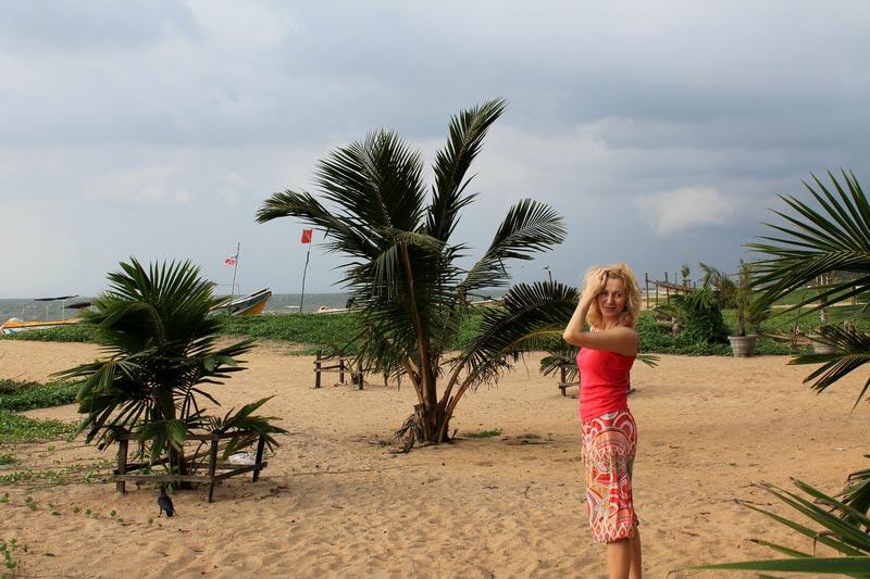 пляж в негомбо пальмы