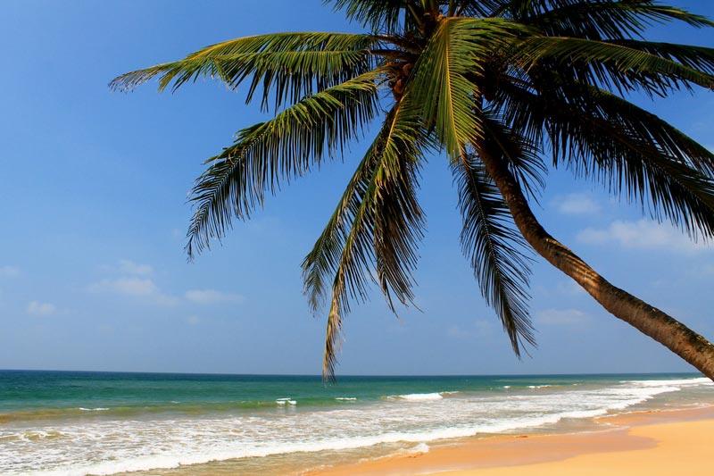шри ланка лучшие пляжи баунти