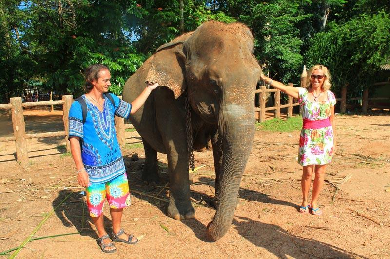 слоновий питомник пиннавела шри ланка фото со слоном