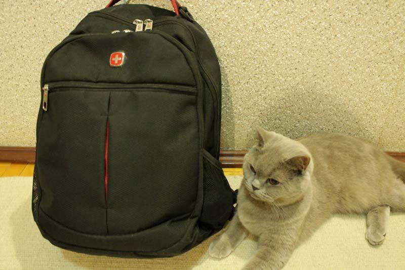 маленький рюкзак для азии