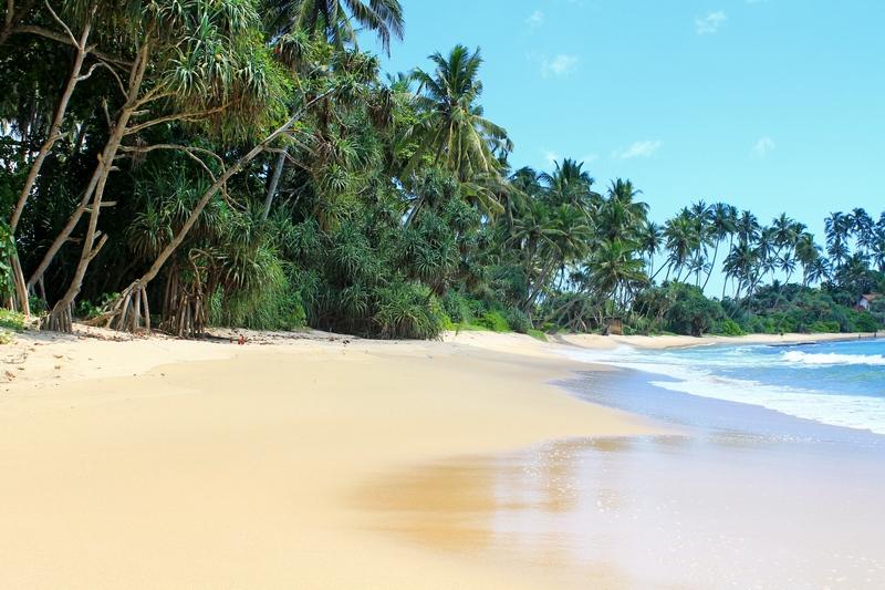 пляж диквелла фото