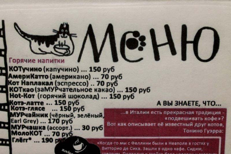 меню кафе республика кошек петербург
