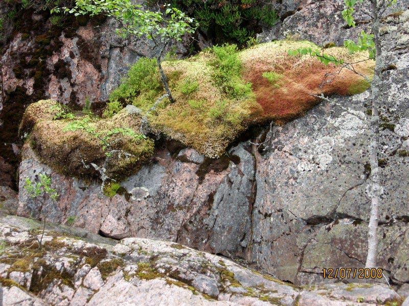 северная ладога шхеры природа фото