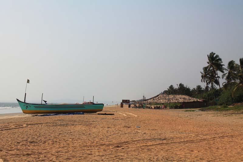 пляж-гоа-бенаулим-14