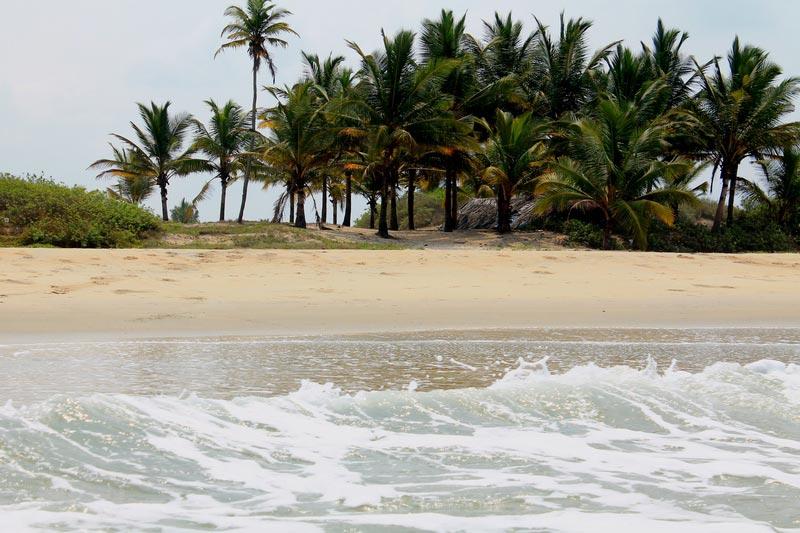 29-пляж-бенаулим-фото