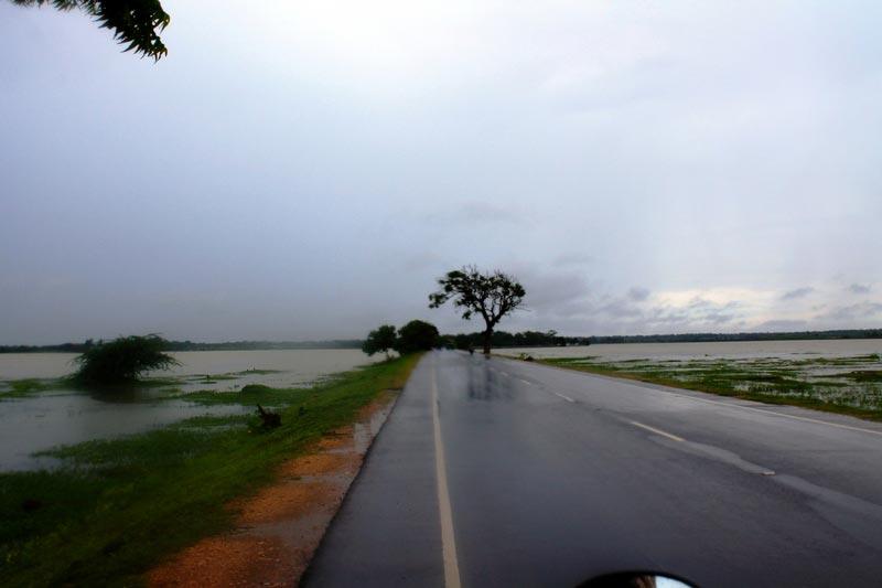 наводнение-шри-ланка-дожди