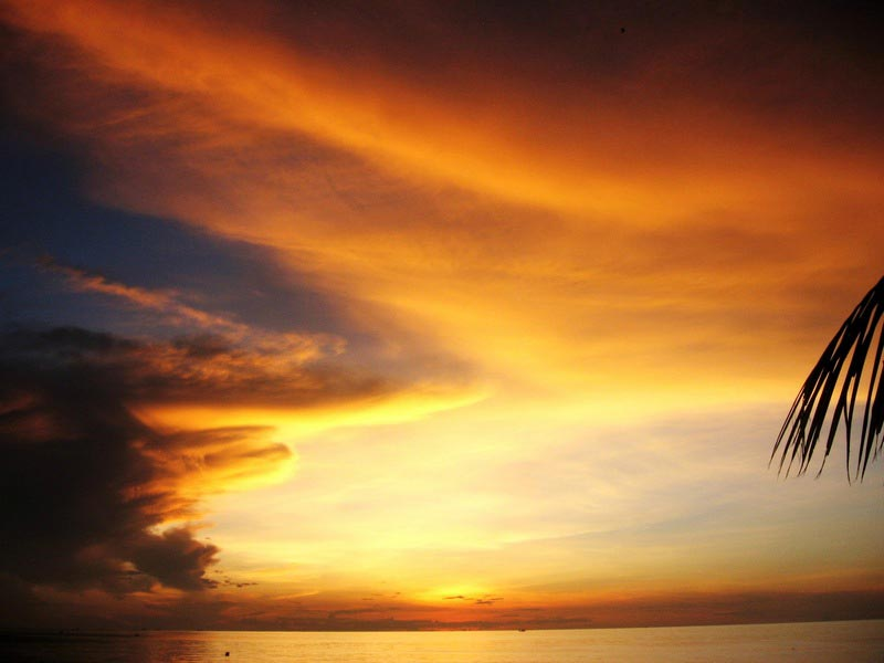1б фото закат
