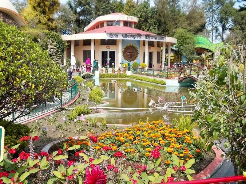 12 цветы в индии