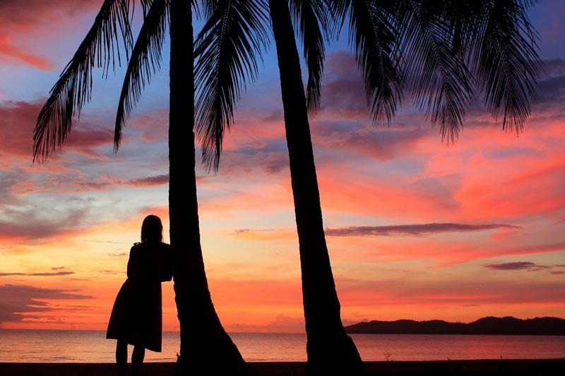 закат пальмы море девушка