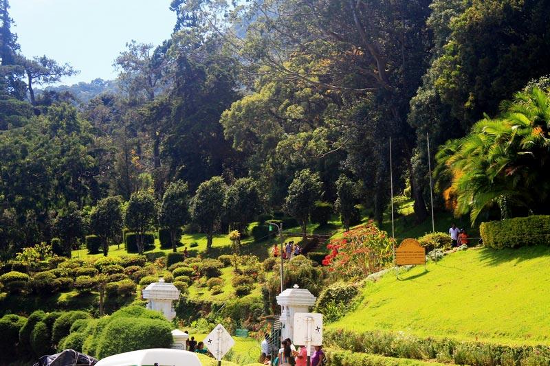24-шри-ланка-вход-в-ботанический-сад