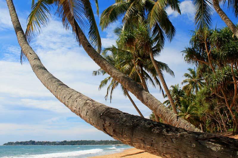 лучший-пляж-шри-ланки-фото