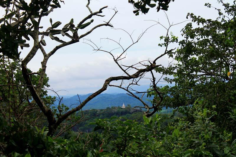28-панорамы-шри-ланки