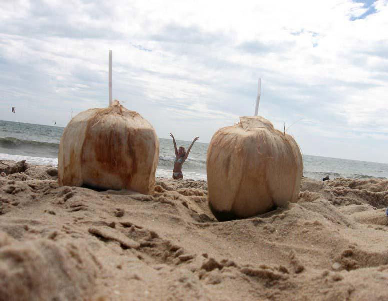 7-девушка-и-кокосы