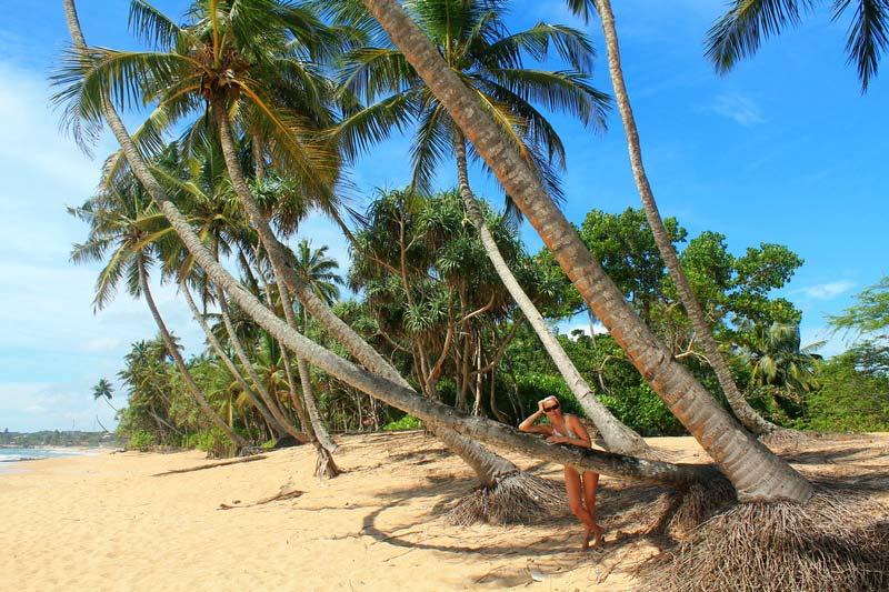 9-лучшие-пляжи-шри-ланки-фото