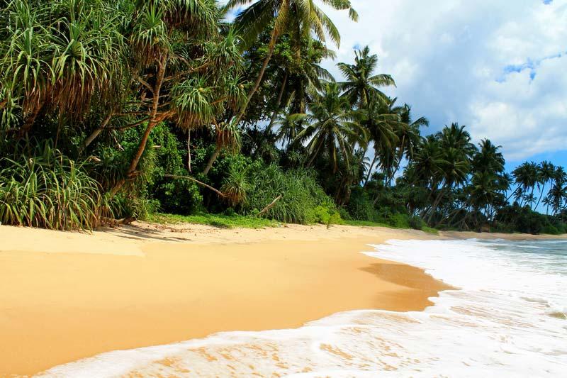 диквелла-пляж
