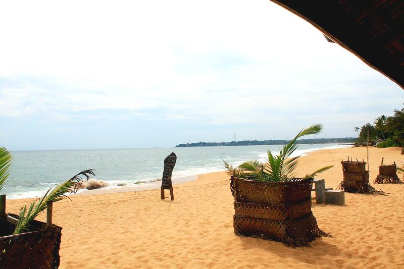 лучший пляж для отдыха шри ланка