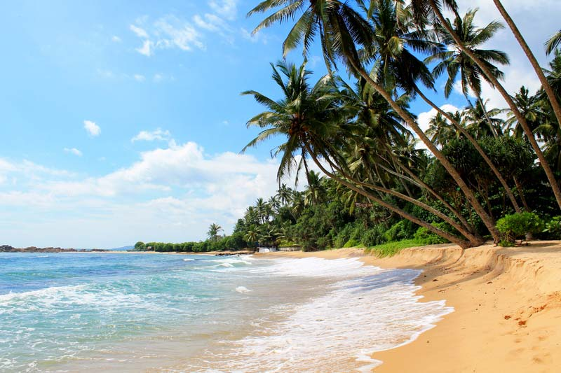 пляж-диквелла-шри-ланка