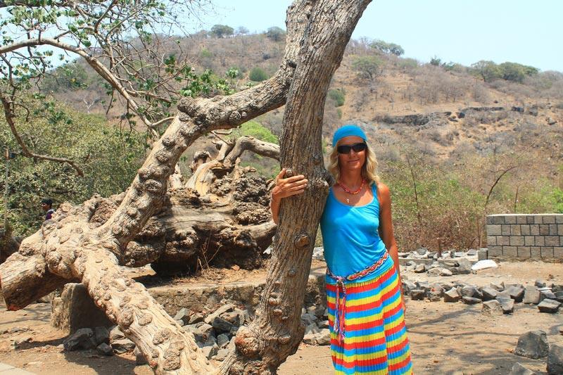 44-девушка-и-дерево