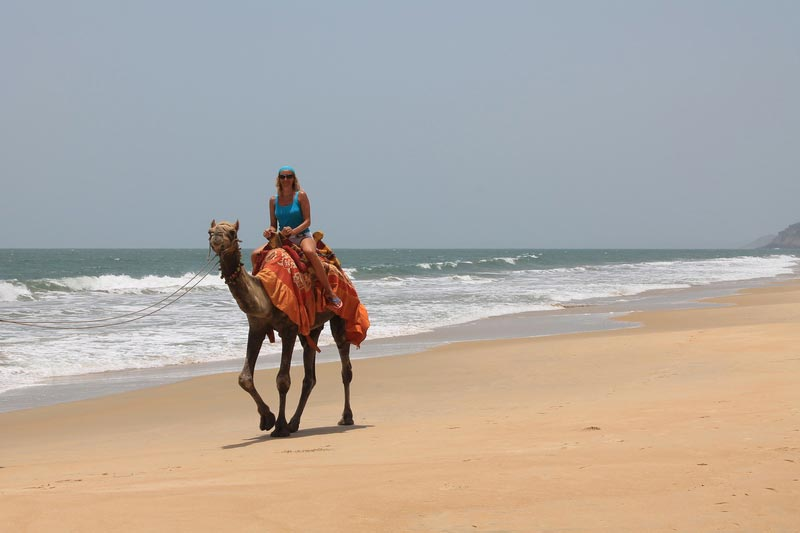 9-на-верблюде-по-пляжу