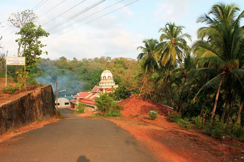 18-храм-в-джунглях