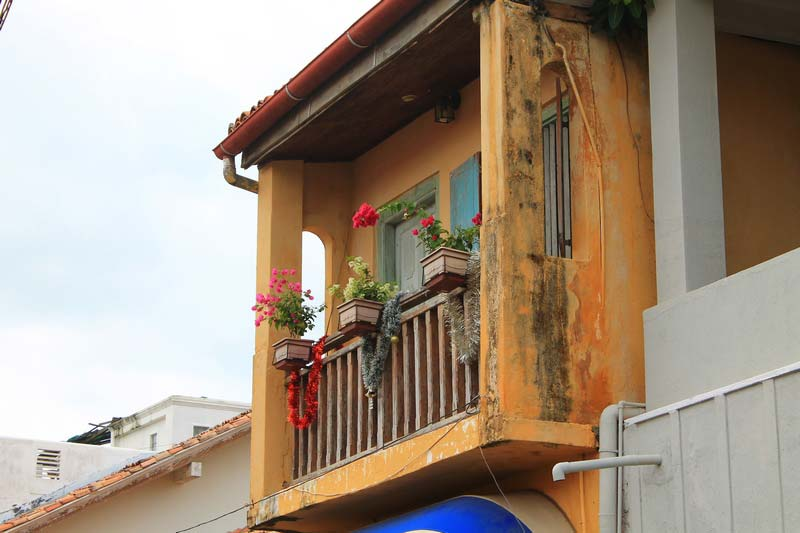 24-цветы-на-балконе