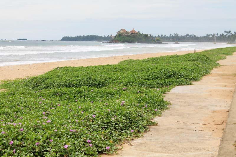 43-набережная-пляж-матара-фото