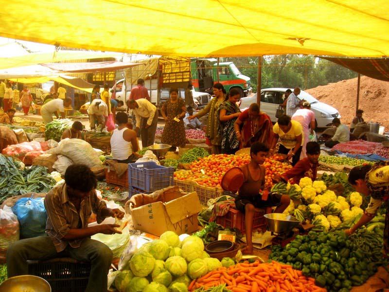 53-фруктовый-рынок-палолем