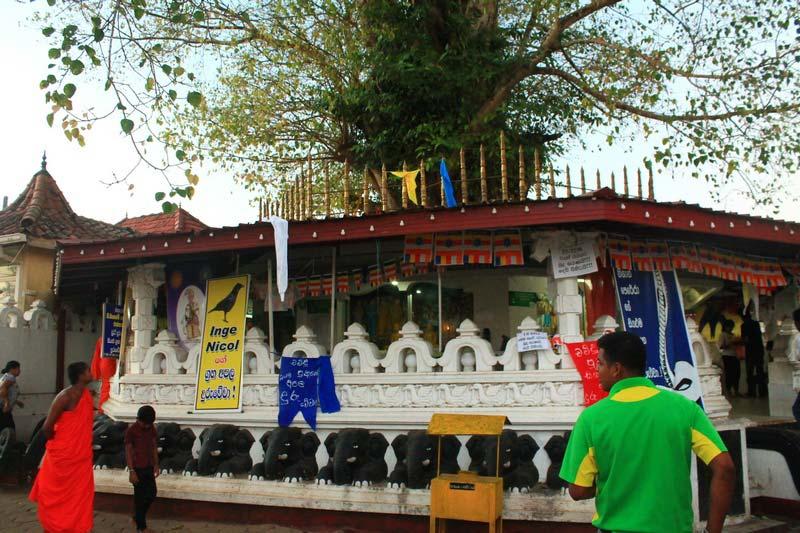 13-храм-канди-вихара
