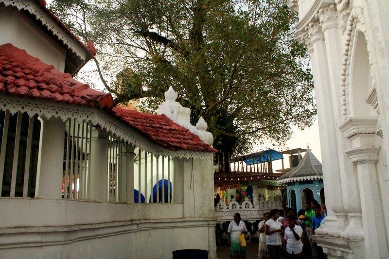 16-храм-канди-вихара