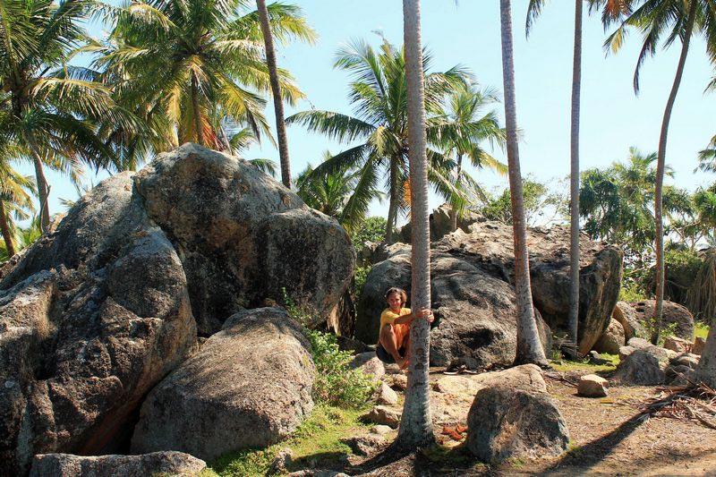 37-скалы-пальмы-фото