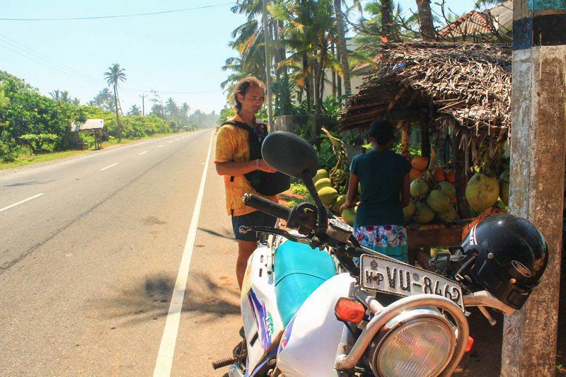 39-кокосы-у-дороги