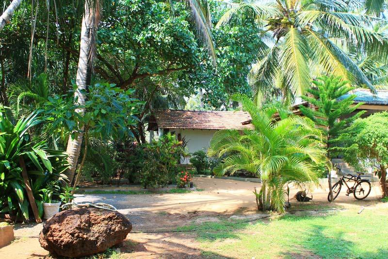 12а-отель-Sri-Lanka-Beach-House