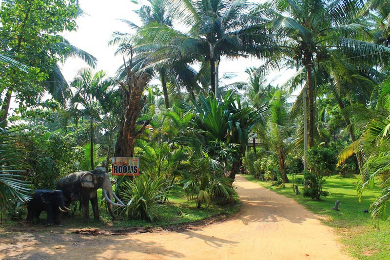 12б-Sri-Lanka-Beach-House