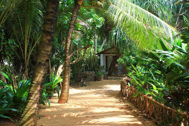 12в-Sri-Lanka-Beach-House-фото